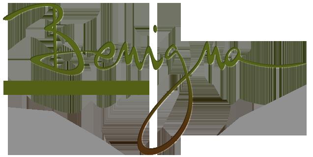 Benigna Health and Balance Ayurvedisch natuurkundige praktijk voor lichamelijke genezing, emotionele gezondheid en geestelijke bewustwording, Den Haag